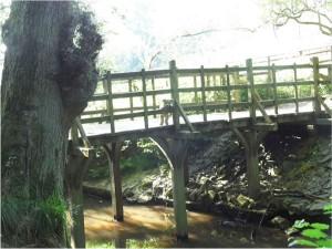GH-W-t-P-on-Pooh-Bridge